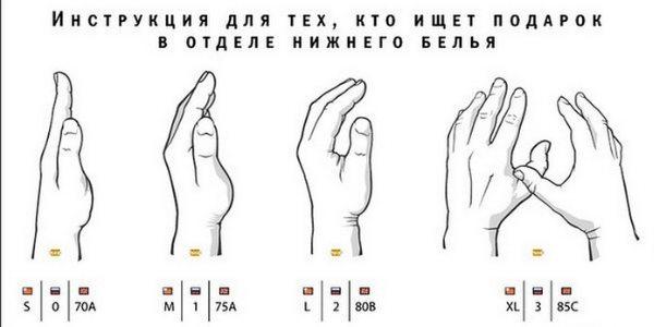 Как определить размер груди: по таблице, по лифчику, на глаз