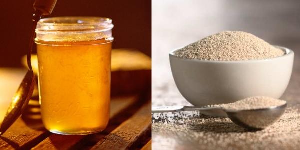 Мед и дрожжи