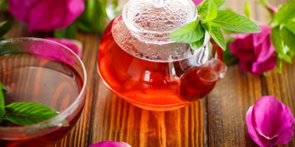 Шиповник (плоды, корни): лечебные свойства и противопоказания