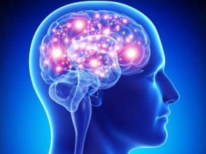 активизация функций мозга