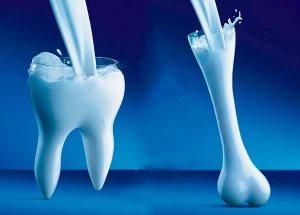 Кости и зубы