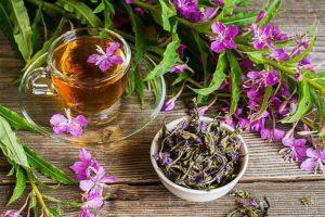 чай с цветами кипрея