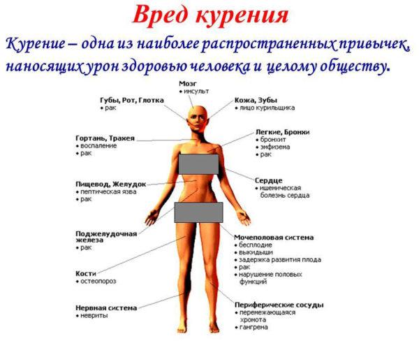 Таблица о вреде курения