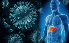 Способы передачи вируса гепатита С