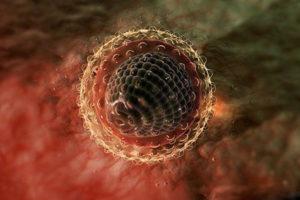 Вирус гепатита в организме