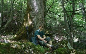 ориентиры в лесу