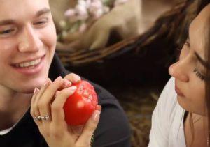 обучение на помидоре