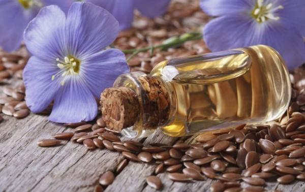 цветки и масло льна