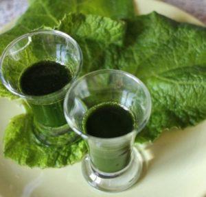 сок из листьев и корней
