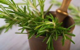 ароматное растение в ступке